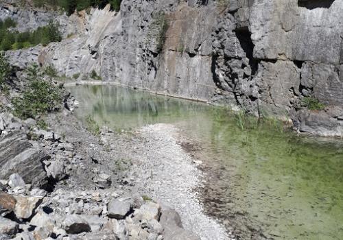 wetland Norway quarry habitat